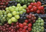 продам черенки и саженцы винограда